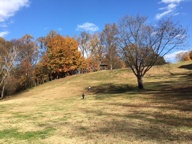 rockville-diaries-maymont-hills
